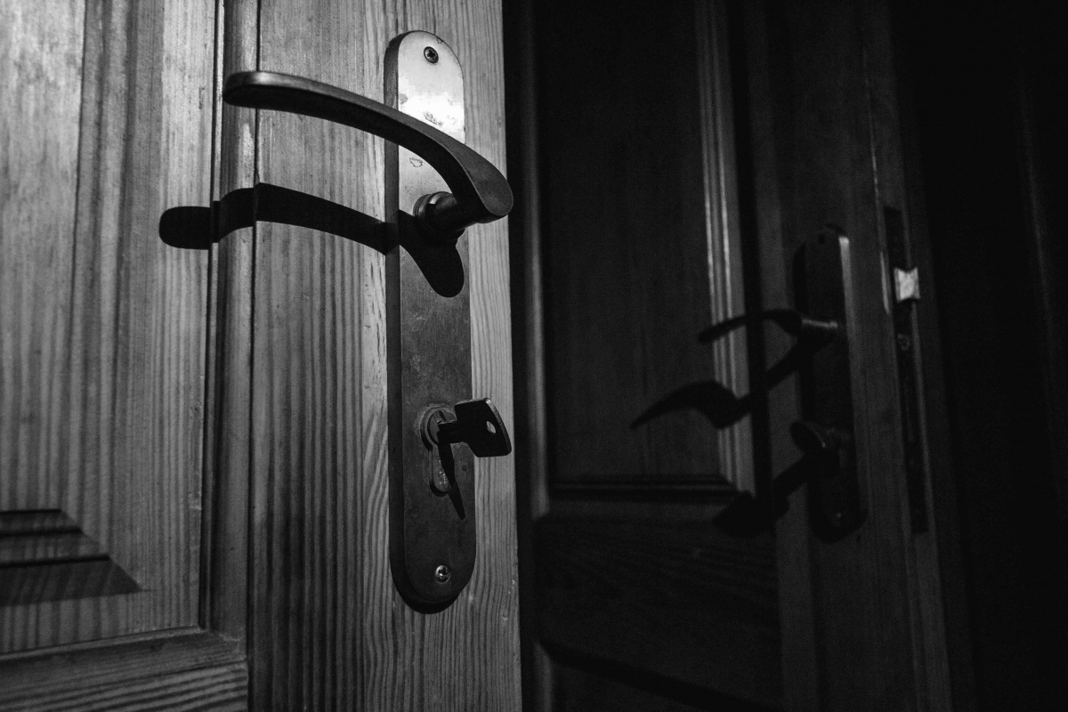 kambarių durys