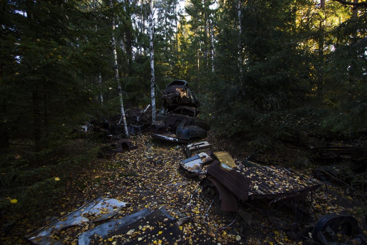Bastnas miškas