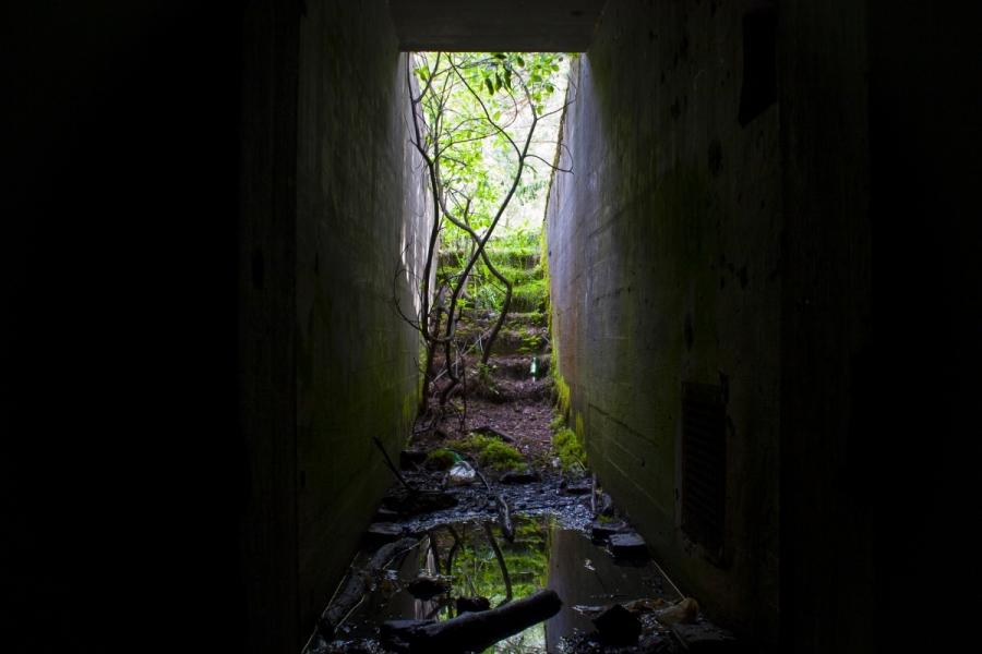 Apaugęs įėjimas į bunkerį
