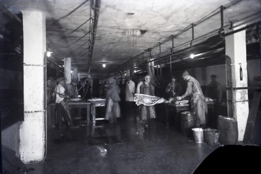 1928 metai
