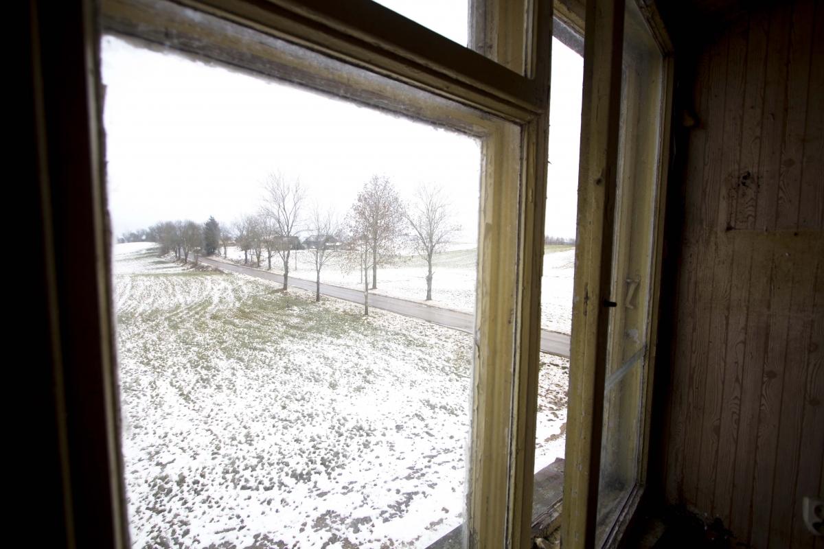 Žvilgsnis pro langą