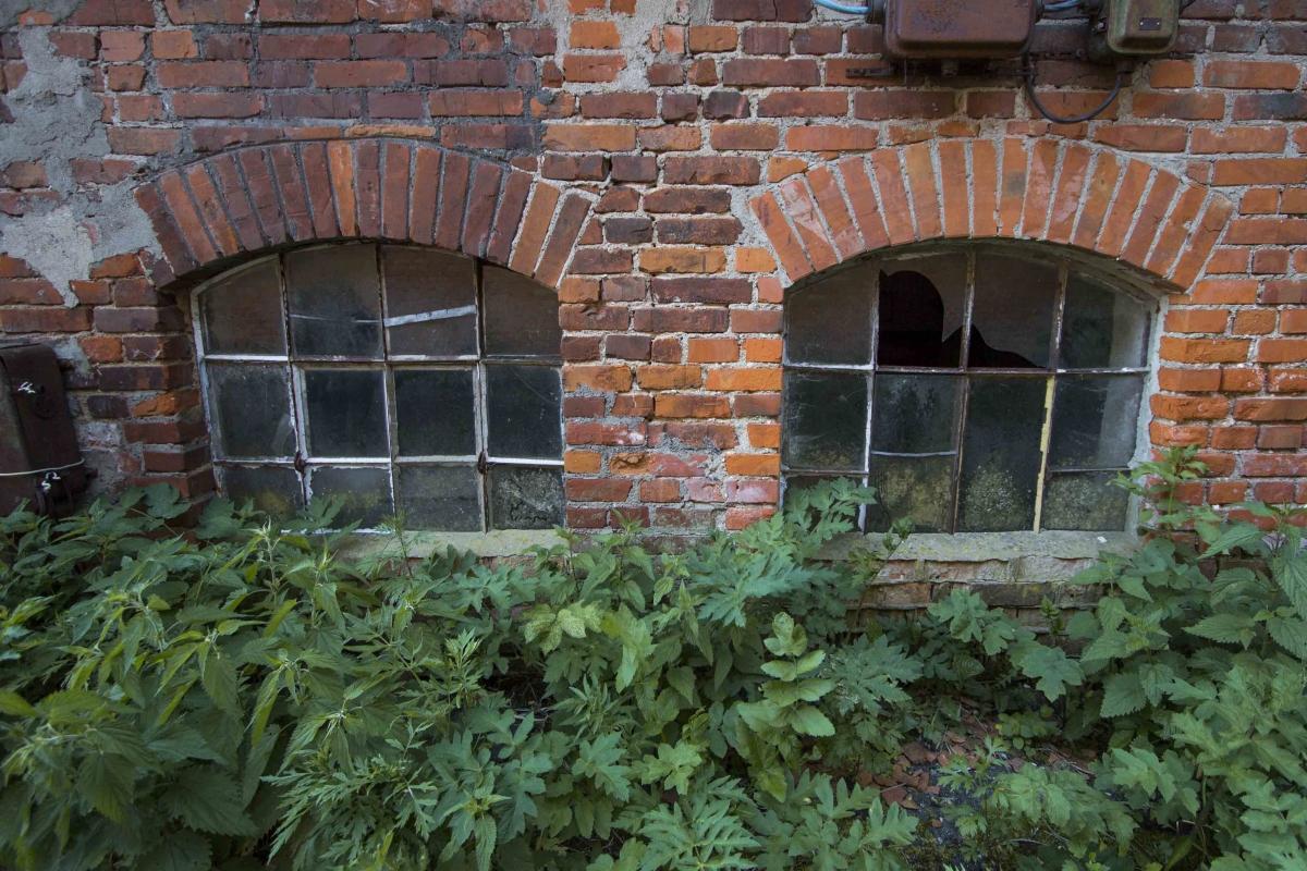 Arkiniai langai